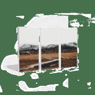 A triptych print