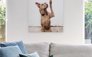 A canvas print hanging above a couch.
