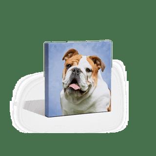 A pet portrait print